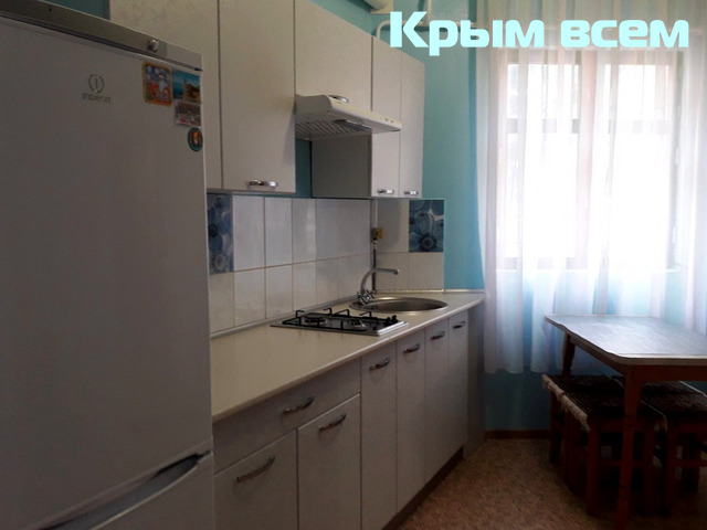 Большая однокомнатнуая квартира с отдельным входом - 6/16