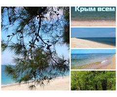 Продам участок у моря в окружении леса